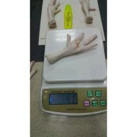 Chicken feet & paws (frozen) - best poultry meat