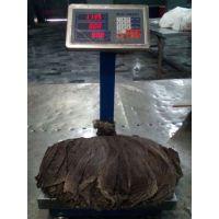 Halal Certified Dried Beef Omasum