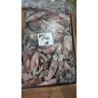 Loligo Squid Frozen W/R Fish