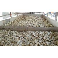 Best Bird Feed/Cuttlefish Bone