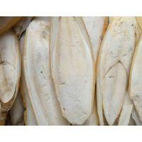 High Quality Dried Cuttlefish Bone