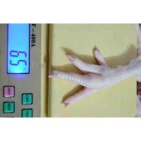 Frozen Chicken Feet & Paws Processor