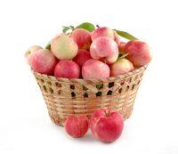 fresh royal fruit gala-apple