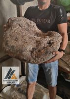 Ambergris Sell