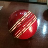 Hand Stitched Leather Cricket Balls