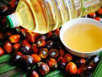 Top Grade REFINED PALM OIL / PALM OIL - Olein CP10, CP8, CP6 For Cooking /Palm Kernel OIl CP10l
