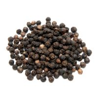 Black Pepper Factory Direct Top Selling Pure Premium Quality Dried Black Pepper