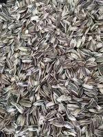 100% Raw sunflower seeds
