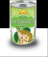 Young Jackfruit in brine