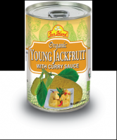 Young Jackfruit Curry sauce - in a delicious Curry Sauce