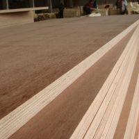 pine plywood pine plywood