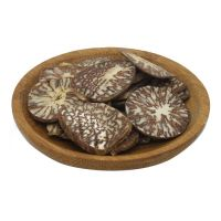 High Quality Whole Dried Betel Nut / Areca Nuts for Wholesale