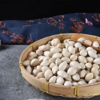 Wholesale Best Quality Ginkgo Nuts