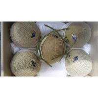 Organic Sweet Hami Melon