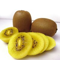 Fresh Yellow Kiwi fruit Pulp Organic