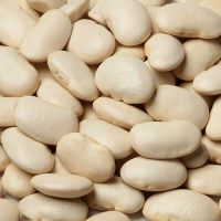 Best Quality White Butter Beans At Low Cost Bulk Price. Contact for best rates