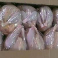 Best selling whole chicken frozen/paws halal High Quality Frozen Chicken Wholesale Prices Chicken