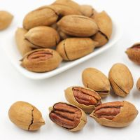 Organic Dry Nuts for Peacan Nut