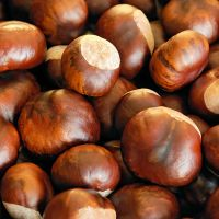 Healthy Chestnuts