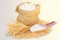 Top First Grade White Barley Baking flour