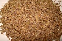 Premium natural dried cumin seeds