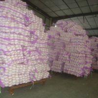 Fresh Garlic/Dehydrated Garlic/Black Garlic,Fried Garlic,