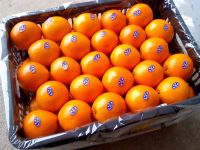 Sweet Fresh mandarin orange/Fresh Orange, Naval Orange, Valencia Oranges for sale