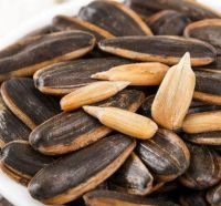 High quality roasted salted agriculture caramel sunflower raw melon seeds for selling