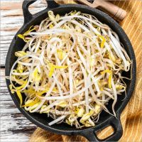 Fresh & Healthy Bean Sprouts