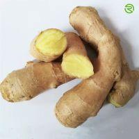 Air Dried Fresh Ginger