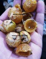 RMY Super Quality Soap Nuts