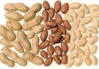 Best Selling Peanut, Ground nut
