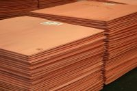 Cathode Copper 99.99 Customized Plate Package