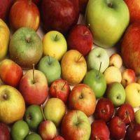 Fuji Apples Fresh Red Fuji Yellow Apples