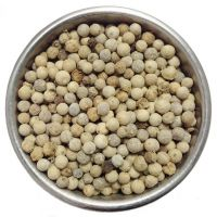 White Pepper Single Spices High Quality Dried Peppercorn Dried White Pepper for Food Cooking