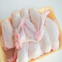 high quality FROZEN CHICKEN WHOLE GRILLER 100% NATURAL