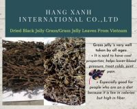 DRIED GRASS JELLY LEAVES // BLACK GRASS JELLY FROM VIET NAM // WHATSAAP: +84359443043