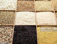 Barley, Milet, Rice, Rey, Wheat, Oats, Sorghum