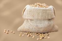 Soybean from Brazil