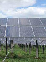 Used solar panels 250-320W polysilicon