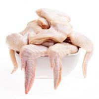 Frozen Chicken Paws / feet