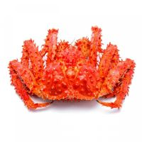High Quality Alaska Lobsters Frozen King Crabs Legs & Frozen King Crabs For Sale