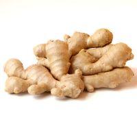 Fresh vegetable ginger