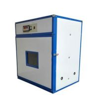Incubator for chicken eggs available