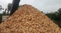Wood Chips Good Quality