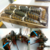 Caribbean Spiny Lobster Panulirus Argus/Australian