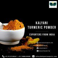 Kalyani Turmeric Powder