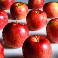 Fresh Fuji Golden Delicious Apple