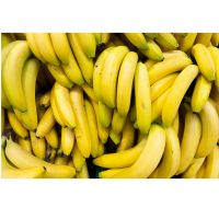 Full Nutrition Fresh Green Banana Increase Muscles Organic Long Yellow Cavendish Banana