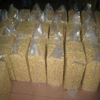 Best Quality Cashew Nuts W320 W240 / Organic Raw Cashew Nuts / Best Price